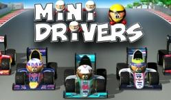 Mini Drivers
